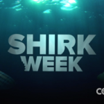 Cozi's Clever Promo Taps Into Shark Frenzy